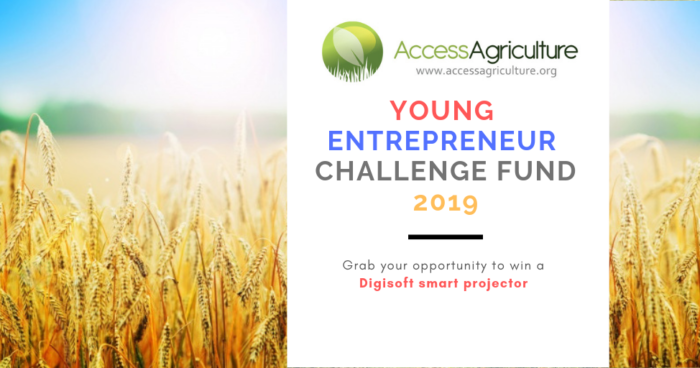 Young Entrepreneur Challenge Fund 2019